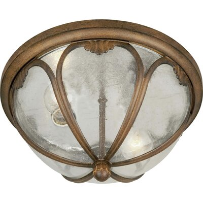 "Forte Lighting 13""Two Light Outdoor Flush Mount with Clear Seeded Glass"