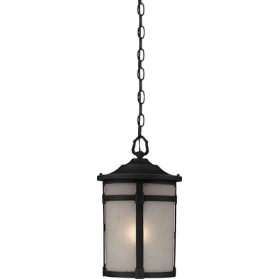 Artcraft Lighting St. Moritz 1 Light Outdoor Pendant