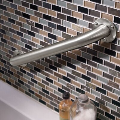 Exposed Mounting Grab Bar in Stainless Steel