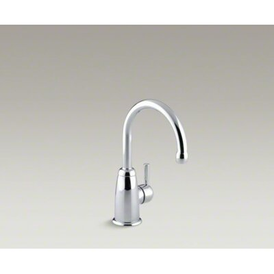 Kohler Wellspring Contemporary Beverage Faucet Complete with Aquifer Water Filtration System