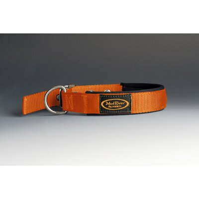 The Swagger Dog Collar in Blaze Orange