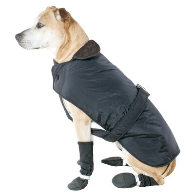 Belted Dog Coat in Black