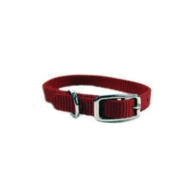 Single Thick Nylon Deluxe Dog Collar in Red