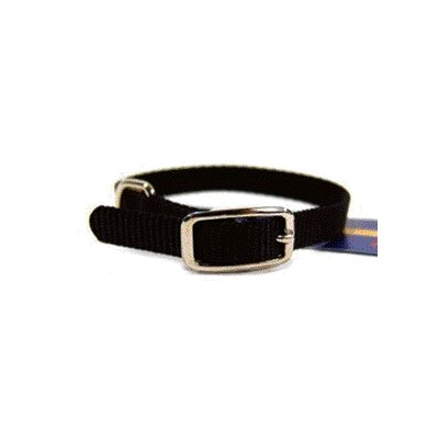 Single Thick Nylon Deluxe Dog Collar in Black