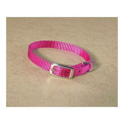 Single Thick Nylon Deluxe Dog Collar in Hot Pink