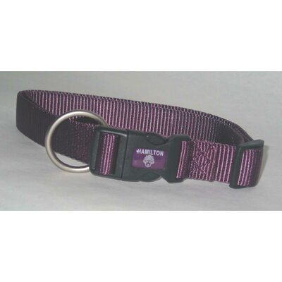 Adjustable Dog Collar in Purple
