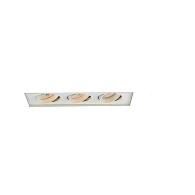 WAC Lighting  Recessed Trimless Multi Spot for MT-330HS in White