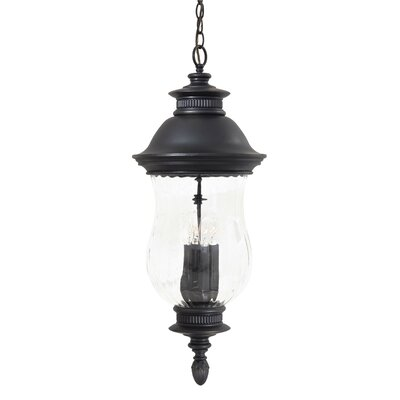 Great Outdoors by Minka Newport 4 Light Outdoor Chain Hanging Lantern