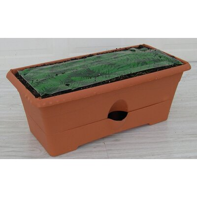 Garden Patch Grow Rectangular Box Planter