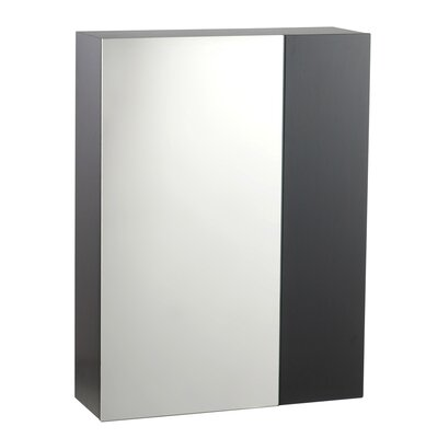 Studio Medicine Cabinet with Mirror in Espresso