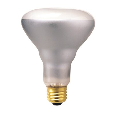 Bulbrite Industries 65W Incandescent BR30 Indoor Reflector Spot Light Bulb in Clear
