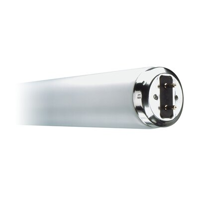 Bulbrite Industries T12 Bi-Pin Base Fluorescent Bulb