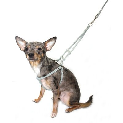 Suede Step-in Dog Harness in Gray