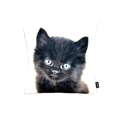 lava Black Persian Cat Pillow