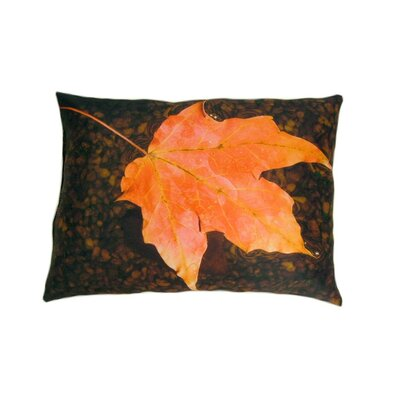 lava Float Pillow
