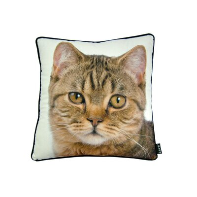 lava British Cat Pillow