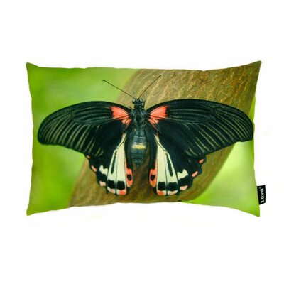 lava Butterfly on Branch Polyester Pillow