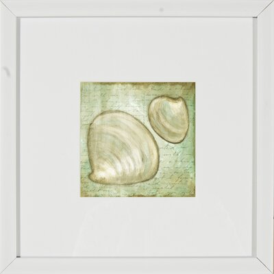 Pro Tour Memorabilia Shells Framed Wall Art (Set of 2)