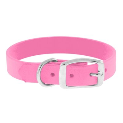 "The Perfect Leash The Perfect 1"" Dog Collar"