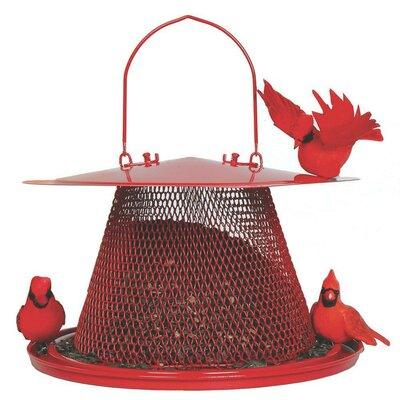 No / No Cardinal Feeder in Red