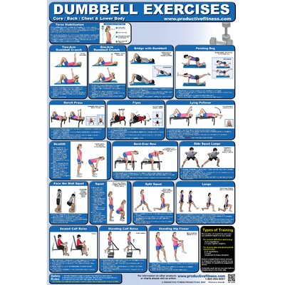 Productive Fitness Publishing Dumbbell Poster - Lower Body