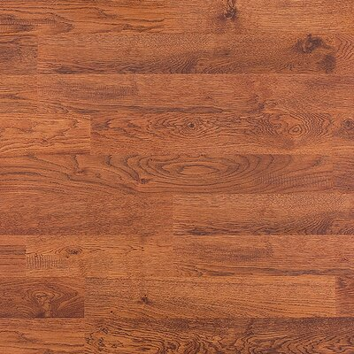8mm Oak Laminate in Nevada