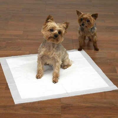 Master Equipment Maximum Puppy Absorbency Pad