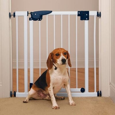 Pressure Mounted Gate in White