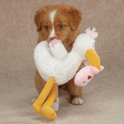 Zanies Silly Stork Dog Toy