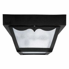 1 Light Outdoor Ceiling Fixture