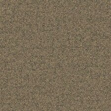 "Beech Tree Lane Square 19.69"" x 19.69"" Carpet Tile in Shining"