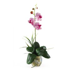 Mini Phalaenopsis Silk Orchid Arrangement in Lavender