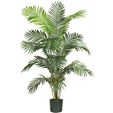 "72"" Paradise Palm Tree in Green"