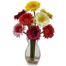 Gerber Daisy with Vase Arrangement