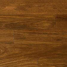 "5-1/2"" Solid Hardwood Brazilian Chestnut Flooring"