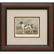 Fox Hound Framed Print