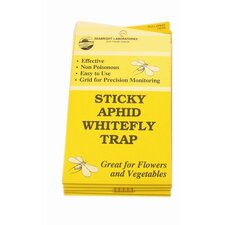 White Fly Trap (Set of 5)