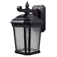Outdoor 1 Light Outdoor Wall Lantern