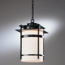 Banded 1 Light Outdoor Hanging Lantern