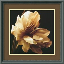 "Timeless Grace I by Charles Britt, Framed Print Art - 15.83"" x 15.83"""