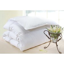Polka Dot Cotton Fill Power Goose Down Comforter