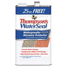 Waterseal Waterproof Plus Masonry Protector