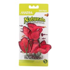 Marina Small Naturals Red Foreground Silk Plant