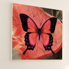 Metamorphosis Butterfly #2 Wall Art