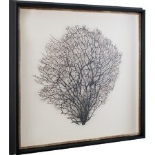 Natural Sea Fan Art