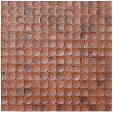 "16-1/2"" x 16-1/2"" Coconut Mosaic Tile in Brown Bliss"