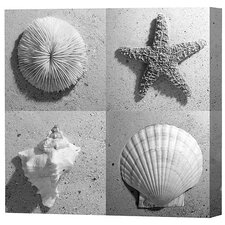 Marine Life Limited Edition Canvas - Scott J. Menaul