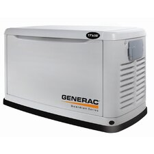 17 Kw Air-Cooled Single Phase 120/140 V Standby Generator in Steel Enclosure
