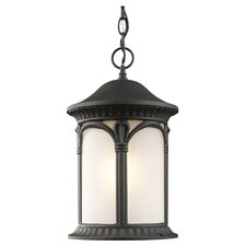Hampton 1 Light Outdoor Chain Light