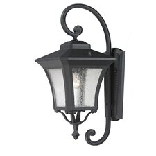 Waterdown 1 Light Outdoor Wall Lantern